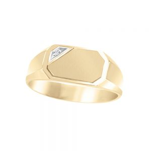 image of 40-AD127Y Signet Ring_White gold with accent corner diamond