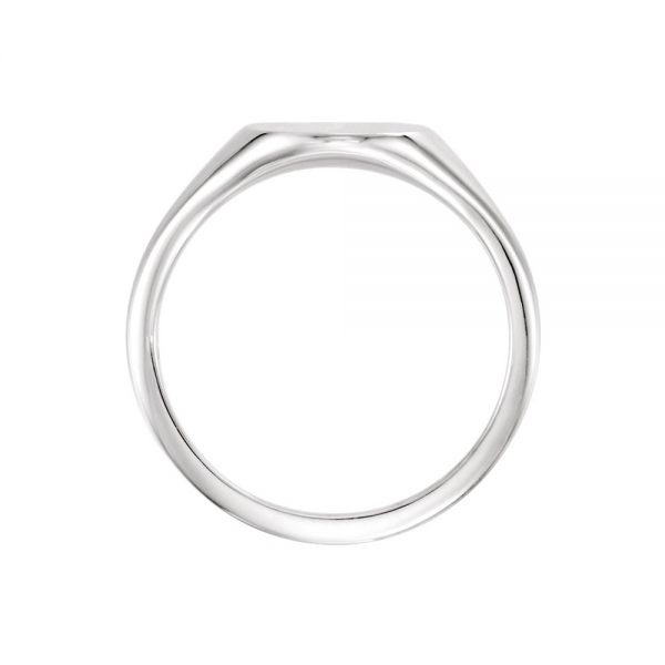 image of 40-GM101a Signet ring_Young mans style white gold