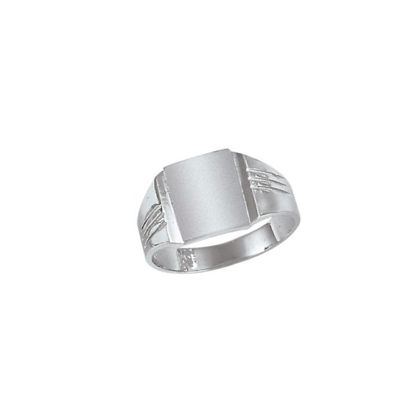 image of 40-N6132 Signet ring_Mens white gold style