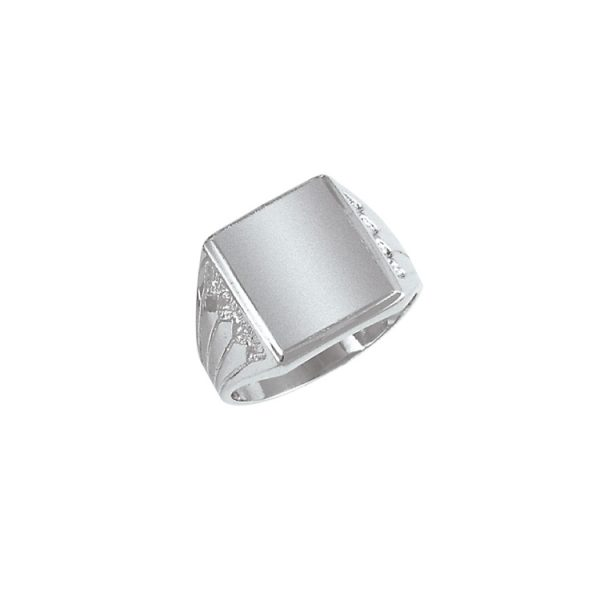 image of 40-N6136 Signet ring_Mens white gold style_side design